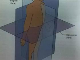 如何预防跑步可能造成的运动伤害—膝盖篇