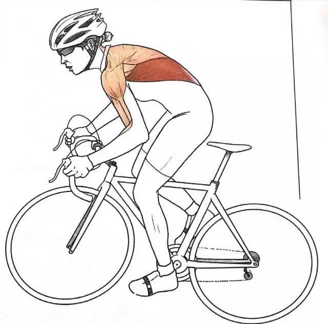 如何预防骑行伤害 — 颈部和上背痛