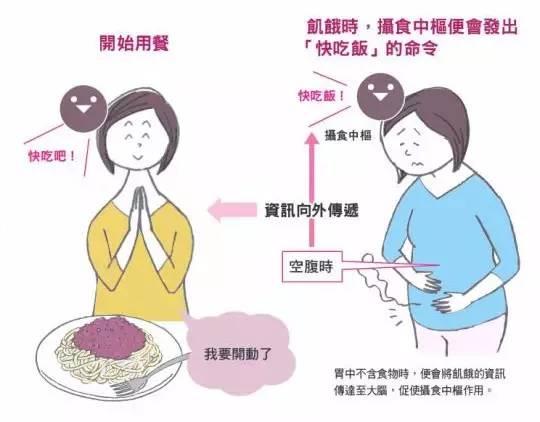 细嚼慢咽,摄取更少,吃得更饱!